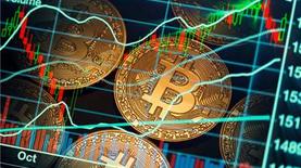 Курс биткоина начал расти после рекордного падения